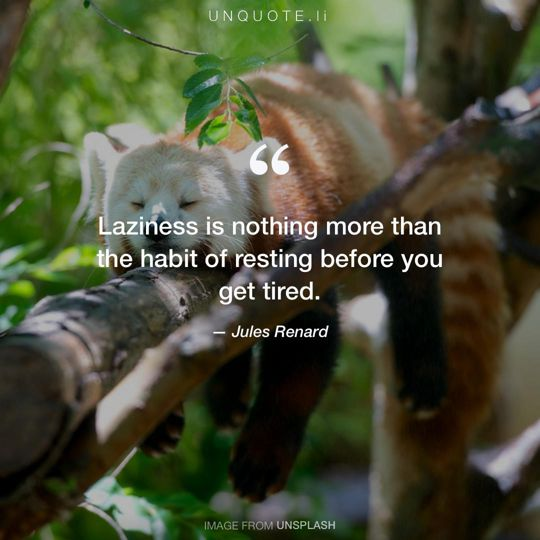Image from Unsplash remixed with quote from Jules Renard.