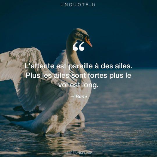 Image d'Unsplash remixée avec citation de Rumi.