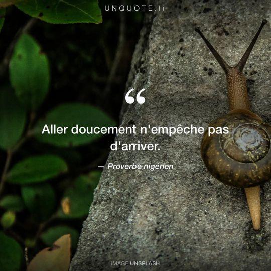 Image d'Unsplash remixée avec Proverbe nigérien.