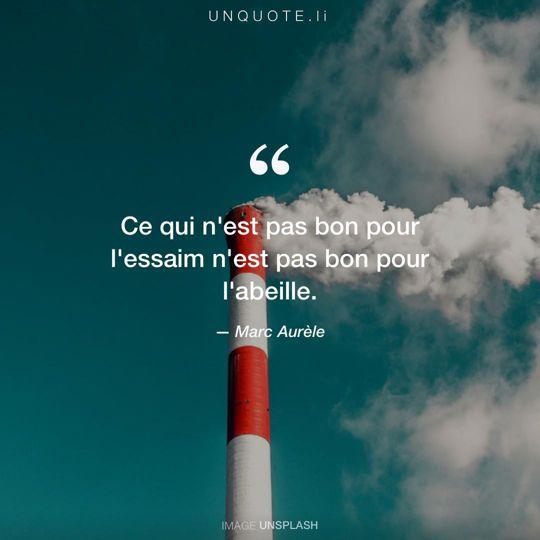 Image d'Unsplash remixée avec citation de Marc Aurèle.