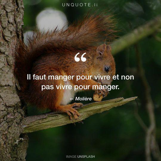 Image d'Unsplash remixée avec citation de Molière.