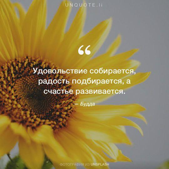 Фотографии от Unsplash цитата: Будда.