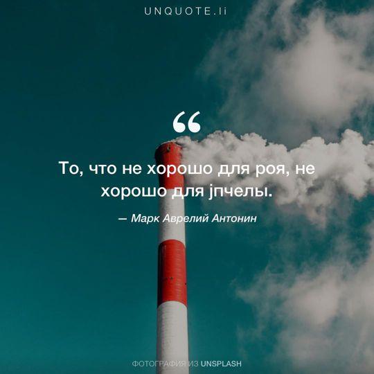 Фотографии от Unsplash цитата: Марк Аврелий Антонин.