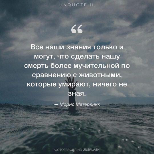 Фотографии от Unsplash цитата: Морис Метерлинк.